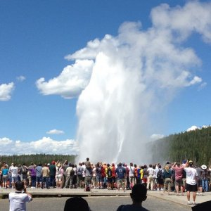 Old Faithful